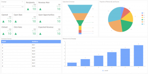 Blank dashboard template of campaign performance