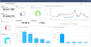Good Finance Dashboard Example for a Financial Management Solution