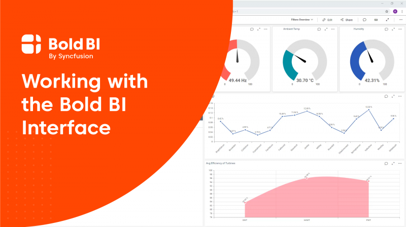 Working with Enterprise BI Interface